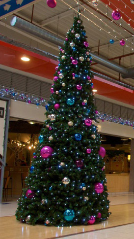 grote-kerstbomen